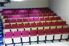Vine_Hall_School_custom_performing_arts_seating_fixed_chairs